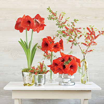 14_bilde_red-holiday-blooms-decor-l