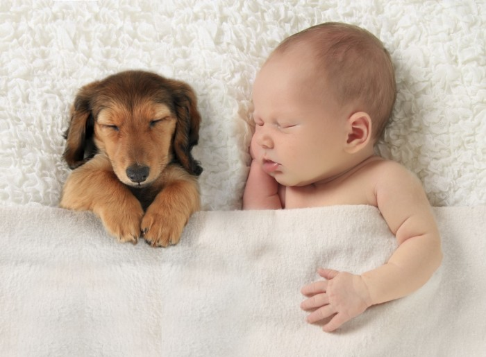 baby-and-puppy-sleeping-sweetly-700x515