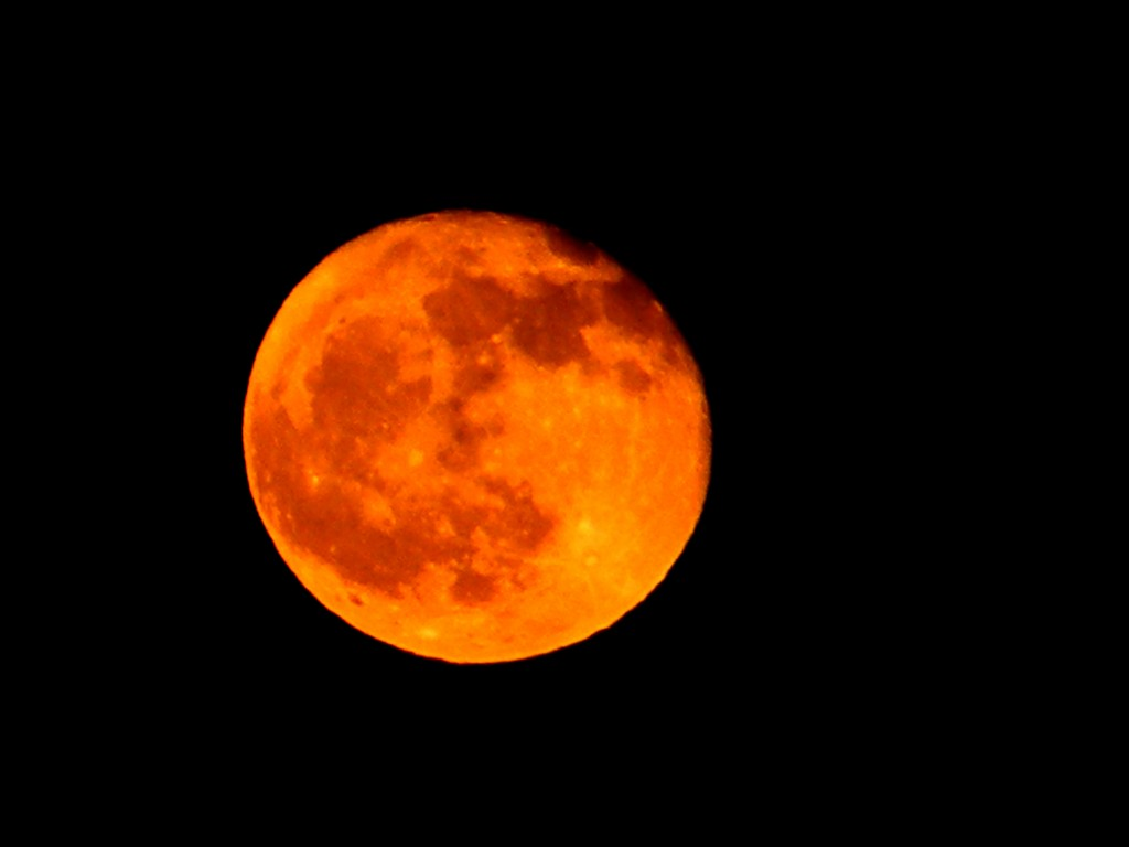 orange_moon_by_thehael-d4jcsta