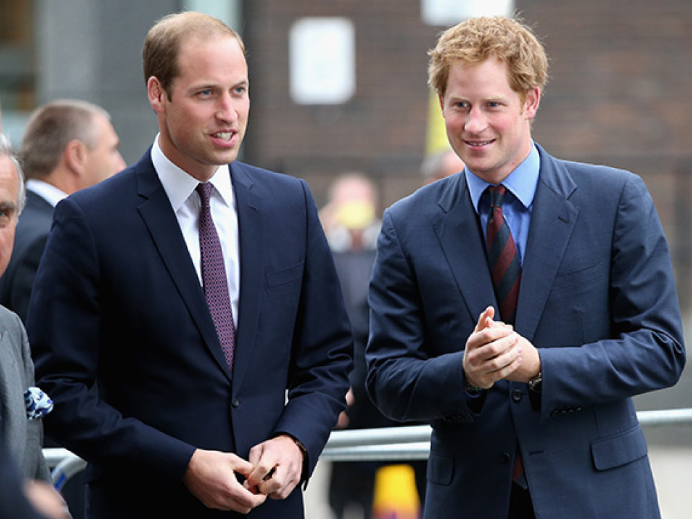 prince-harry-tells-william-he-will-train-princess-heir-ftr
