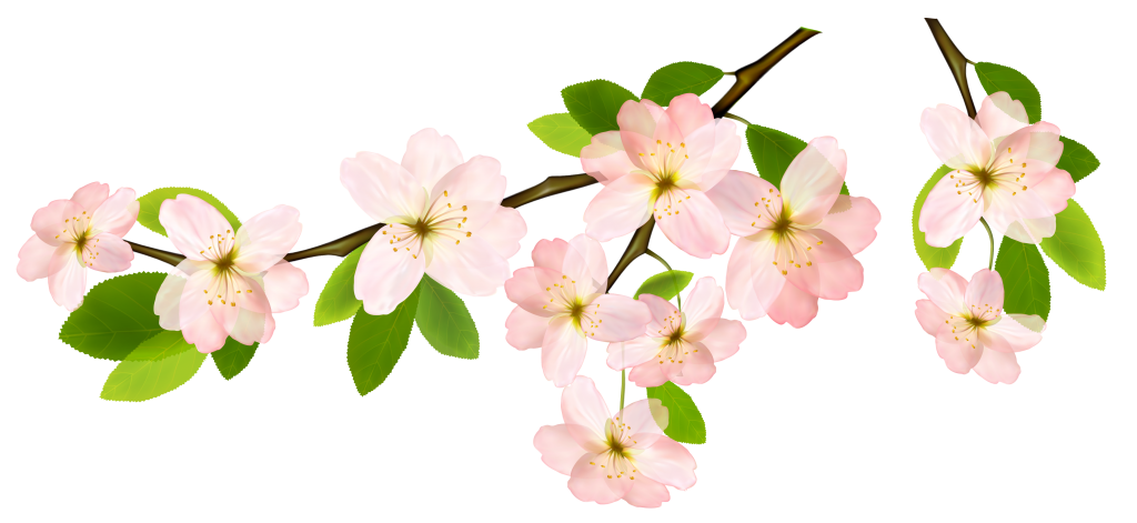 Spring_Branch_PNG_Clipart_Picture