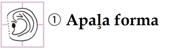 1.apalja forma