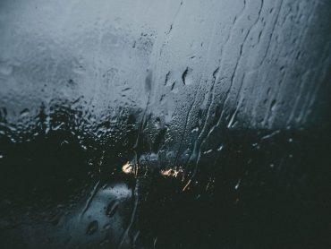Bezvēsts.lv atklāj skumju faktu par Ādažos mežā atrasto noslepkavoto sievieti